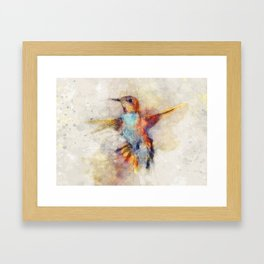 Hummingbird art series Framed Art Print