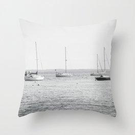 Coastal Maine Mornings Throw Pillow