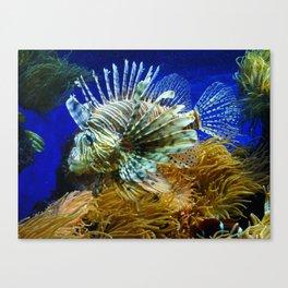 Fabulous Fish Canvas Print