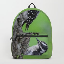 Downy Woodpecker! Backpack