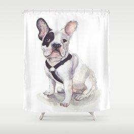 Humphrey the French Bulldog Shower Curtain