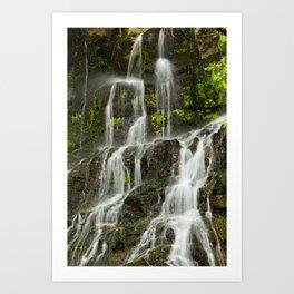 Ho Opi'i Waterfall  Art Print
