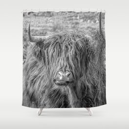 Black and white big Scottish Highland cow Shower Curtain