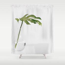 Single Monstera Leaf In Clear Glass Zen Minimalist House Plant Photo Shower Curtain