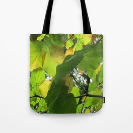 Leaf in the Light Tote Bag