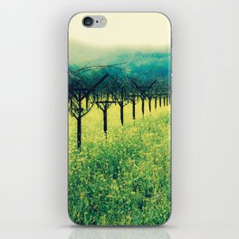 Winter Vineyard I - Serenity iPhone Skin