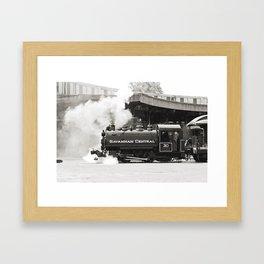 Savannah Train Framed Art Print