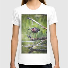 Green Heron in the channel T-shirt