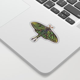 Spanish Moon Moth (Graellsia isabellae) Sticker