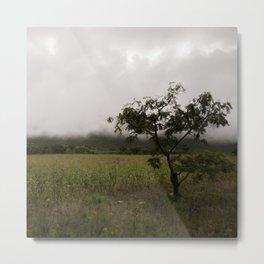 Beautiful mist Metal Print