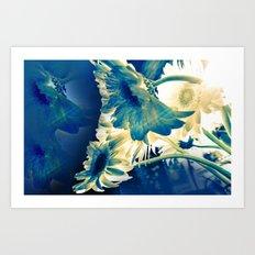 Evening Rays Art Print