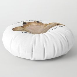 I Used To Be A Prince - Now I Am Just A Horny Toad Floor Pillow