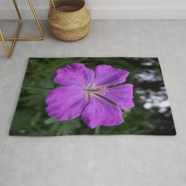 Violet Viola Flower With Garden Background  Rug