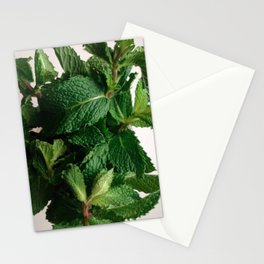 The Avant-Garden Forage || Mint Leaves  Stationery Cards