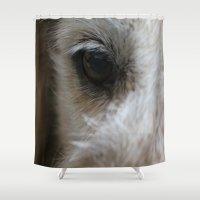 golden retriever Shower Curtains featuring Golden retriever eye 2 by Isabelle Savard-Filteau
