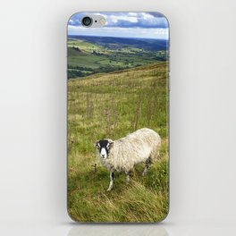 Black Face Sheep on the North York Moors iPhone Skin