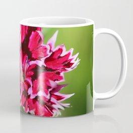 Flashy Dianthus Flower Coffee Mug