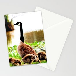 Canada Goose and Goslings Stationery Cards