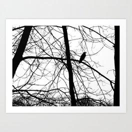 The Raven #2 Art Print