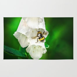 The Bumble Bee Rug