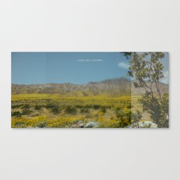Trippy Joshua Tree super bloom Canvas Print