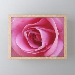 Everlasting Pink Framed Mini Art Print
