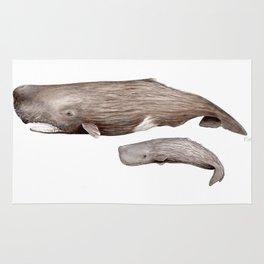 Sperm whale Rug