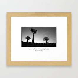 Quiver tree forest at Keetmanshoop Framed Art Print