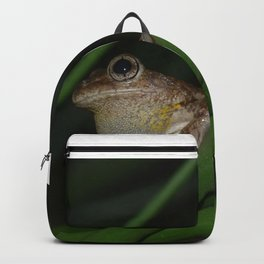 amphibian Backpack