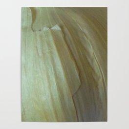 Garlic Skin Poster