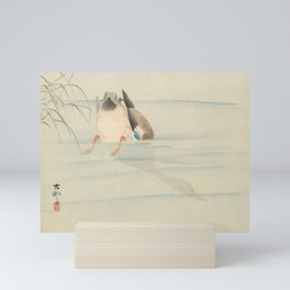 Wild duck, the head under water - Ohara Koson (1900-1930) Mini Art Print