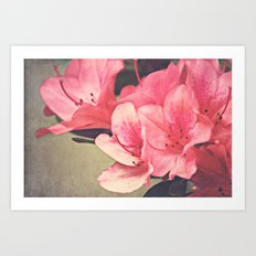 Strawberry Flowers Art Print
