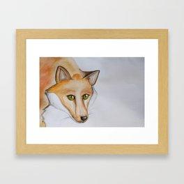 Greeneyed Fox Framed Art Print