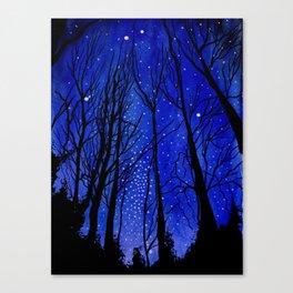 Night under the Stars Canvas Print