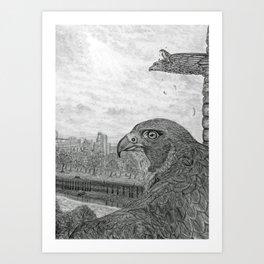 The Urban Peregrine Art Print