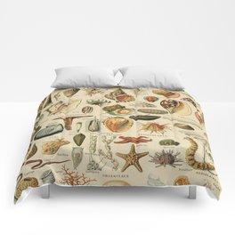 Vintage sealife and seashell illustration Comforters