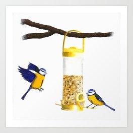 Blue Tit Birds Art Print