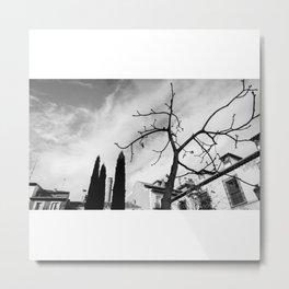 Muerte (paisaje involuntario) Metal Print