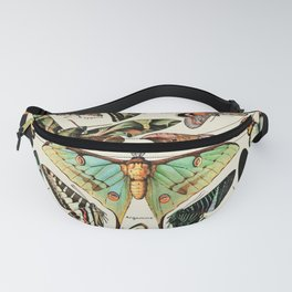 Papillon I Vintage French Butterfly Charts by Adolphe Millot Fanny Pack
