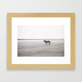 Horse a la playa Framed Art Print