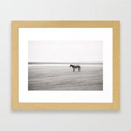 Horse a la playa Framed Art Print