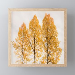 Aspen Trees #decor #buyart #society6 Framed Mini Art Print