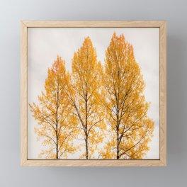 Aspen Trees #decor #society6 #buyart Framed Mini Art Print