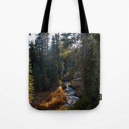 Window in the Woods (Kings Creek) Tote Bag