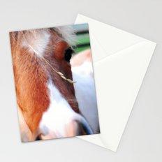 li'l sebastian Stationery Cards