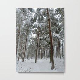 Snowy woodland Metal Print