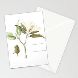 "Flowering ""Little Gem"" Magnolia Tree Stationery Cards"
