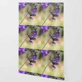 Amata Phagea on lavender Wallpaper