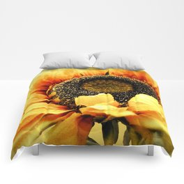 Sunflower A203a Comforters