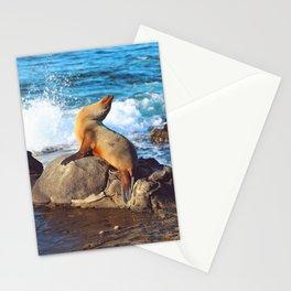 SeaLion Mermaid Stationery Cards